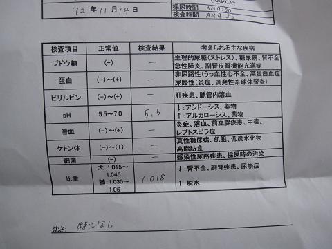 コピー ~ IMG_0166.JPG