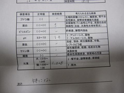 コピー ~ IMG_4671.JPG